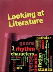 Looking at Literature