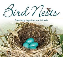 Bird Nests: Amazingly Ingenious and Intricate