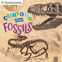 Curious About Fossils