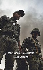 Crisis and Class War in Egypt: Social Reproduction, Factional Realighments and The Global Political Economy