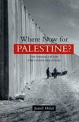 Where Now for Palestine?: The Demise of the Two-State Solution
