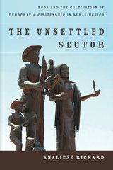 The Unsettled Sector: NGOs and the Cultivation of Democratic Citizenship in Rural Mexico