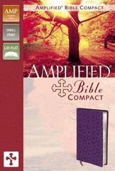 NIV, Beautiful Word Coloring Bible for Teen Girls, Imitation Leather, Pink/Blue: Hundreds of Verses to Color