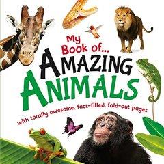 My Book of Amazing Animals