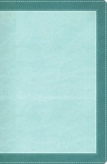 NIV, The Woman's Study Bible, Imitation Leather, Turquoise, Indexed