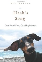 Flash's Song: How One Small Dog Turned into One Big Miracle by Pflatz, Kay