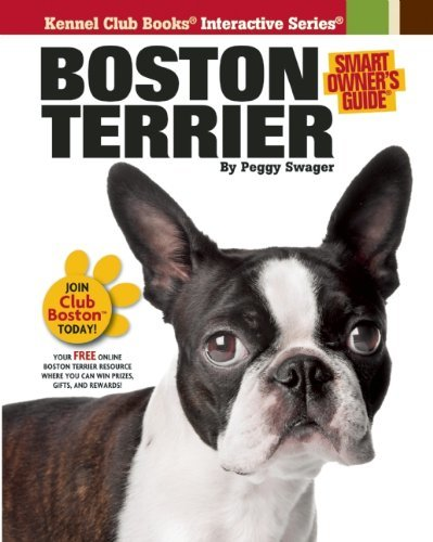 Boston Terrier by Swager, Peggy