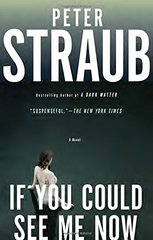 If You Could See Me Now by Straub, Peter