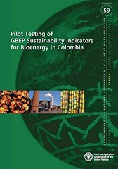 Pilot Testing of GBEP Sustainability Indicators for Bioenergy in Colombia