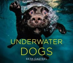 Underwater Dogs by Casteel, Seth